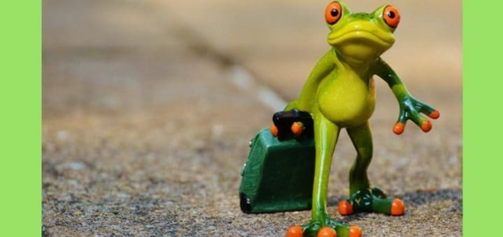Frog with suitcase small sculpture